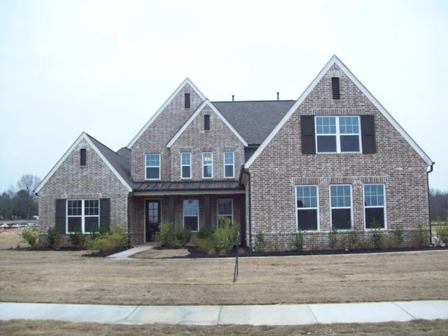 7198 E Harrier Drive, Olive Branch, MS 38654 (MLS #320542) :: Signature Realty