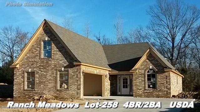 6521 Anna May Drive, Walls, MS 38680 (MLS #320554) :: Signature Realty