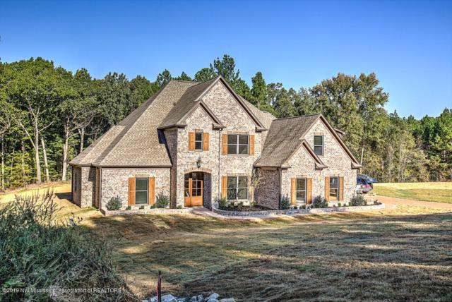 6694 Hawks View, Olive Branch, MS 38654 (MLS #320988) :: Signature Realty