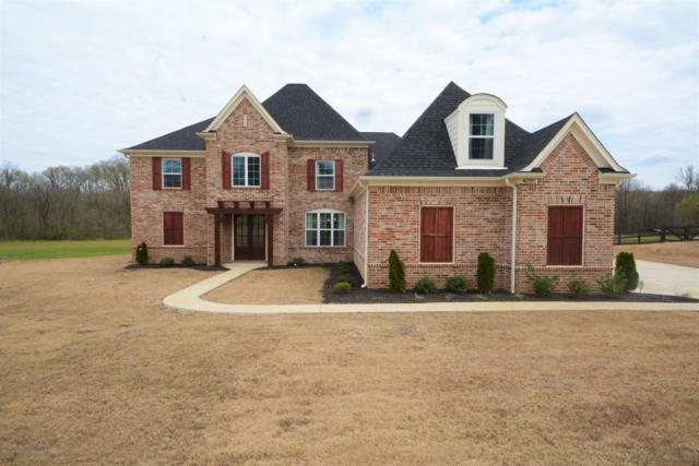 4090 N Fogg Road, Nesbit, MS 38601 (MLS #321913) :: Gowen Property Group | Keller Williams Realty