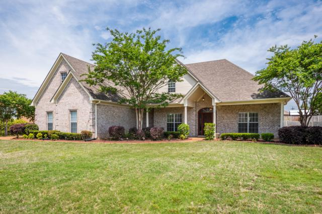 1800 Cashion Cove, Hernando, MS 38632 (MLS #322274) :: Signature Realty