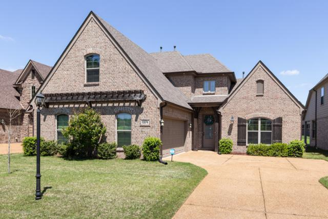 6974 S Dakota Circle, Olive Branch, MS 38654 (MLS #322608) :: Signature Realty