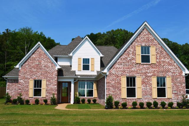 6711 Hawks View, Olive Branch, MS 38654 (MLS #322812) :: Signature Realty