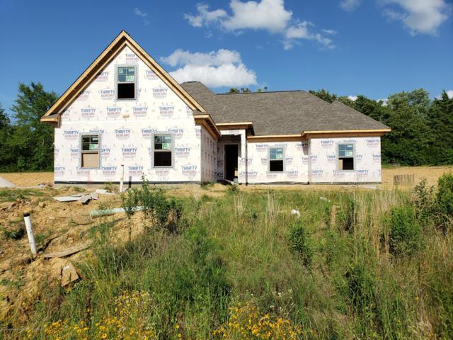 210 Eagle View Drive, Senatobia, MS 38668 (#323378) :: Berkshire Hathaway HomeServices Taliesyn Realty