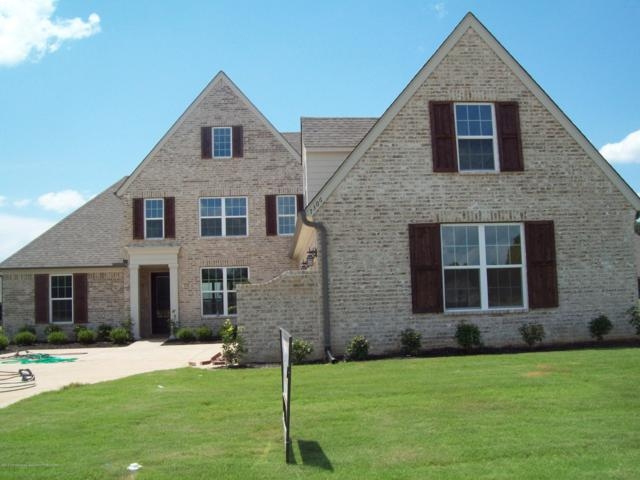 7306 Fulton Square Drive, Olive Branch, MS 38654 (MLS #323381) :: Signature Realty