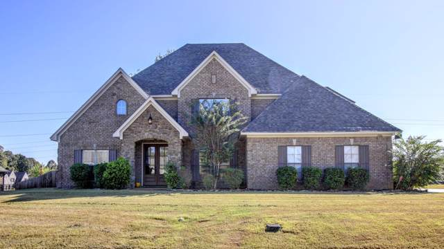 5580 Chessie Drive, Olive Branch, MS 38654 (MLS #325630) :: Signature Realty