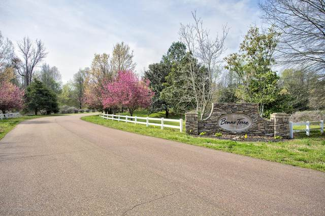4703 Bonne Terre Drive, Nesbit, MS 38651 (MLS #328450) :: The Home Gurus, Keller Williams Realty