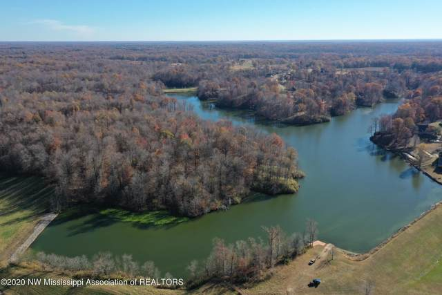 10100 Green River Road, Lake Cormorant, MS 38641 (MLS #328483) :: The Justin Lance Team of Keller Williams Realty