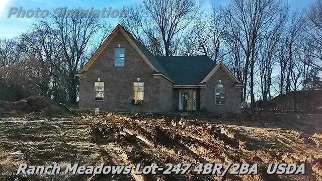 7535 Sophie Cove, Walls, MS 38680 (MLS #329347) :: Signature Realty