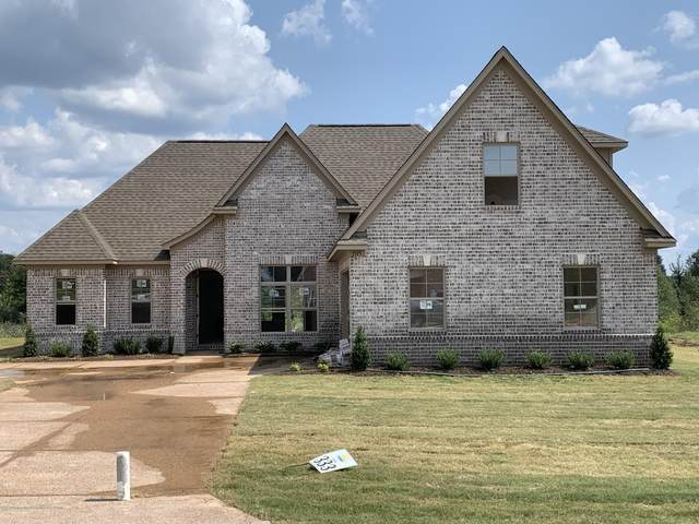 1575 Treestand Road, Southaven, MS 38672 (MLS #331171) :: The Live Love Desoto Group