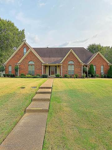 8485 Collinswood Drive, Olive Branch, MS 38654 (MLS #331552) :: Signature Realty