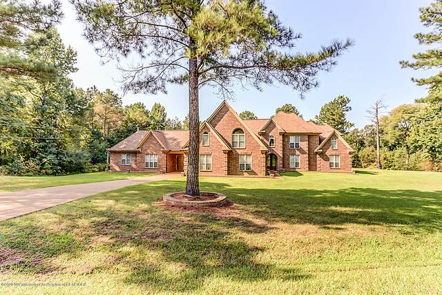 83 Dollie Irene Drive, Mount Pleasant, MS 38649 (#331689) :: Area C. Mays | KAIZEN Realty