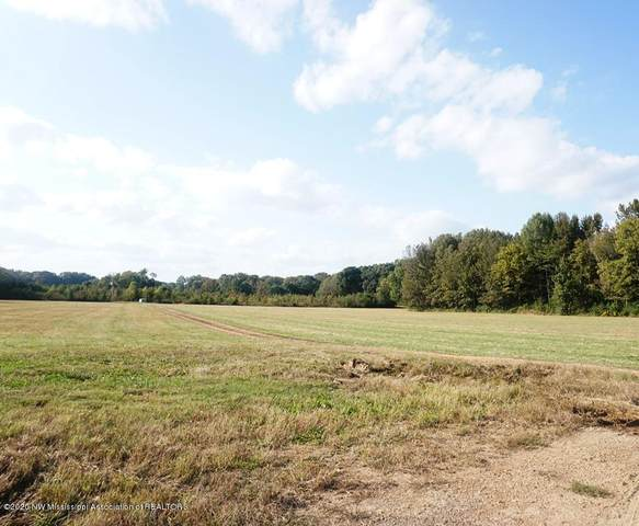 003 Carolina Circle, Senatobia, MS 38668 (MLS #332176) :: Signature Realty