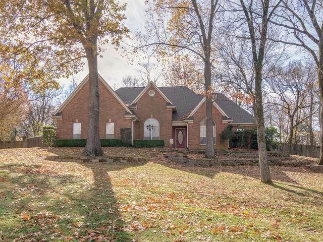 7683 S Rigmoore Point, Olive Branch, MS 38654 (MLS #332213) :: Signature Realty
