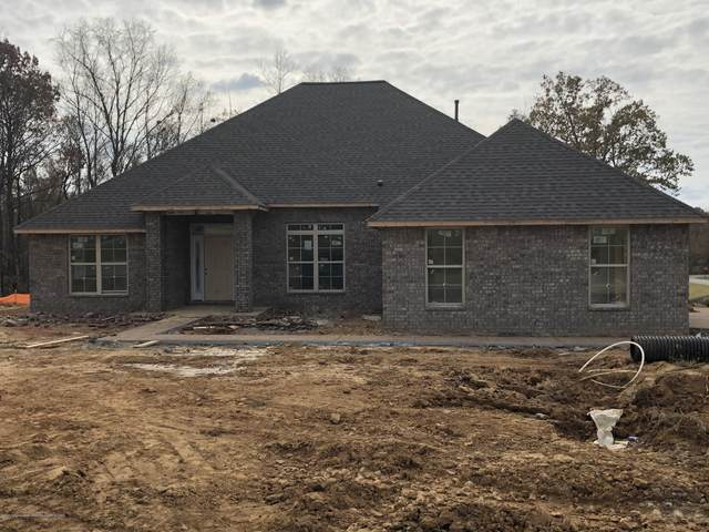 9569 Trenton Trail, Olive Branch, MS 38654 (MLS #332747) :: Signature Realty