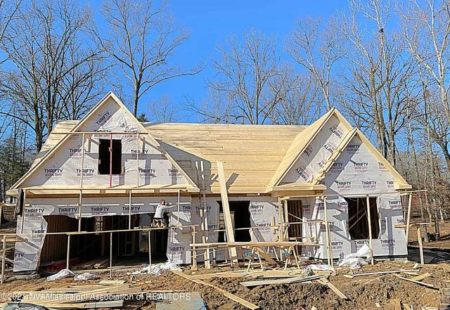 2701 Maple Hill Drive, Nesbit, MS 38651 (MLS #333136) :: The Home Gurus, Keller Williams Realty
