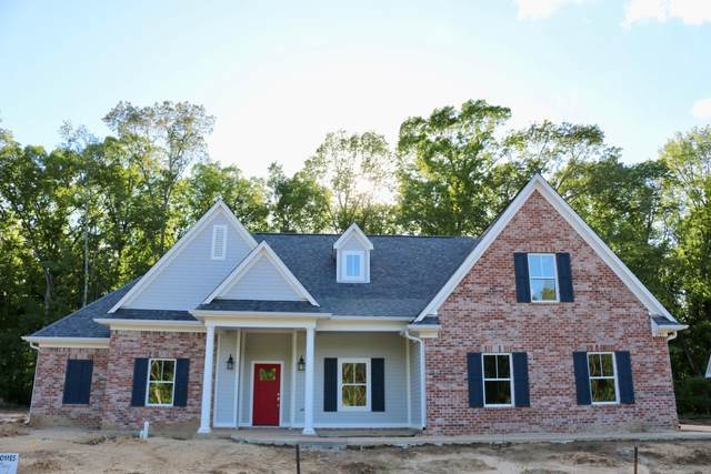 6723 Sunny Meadow Cove, Southaven, MS 38672 (MLS #326226) :: Signature Realty