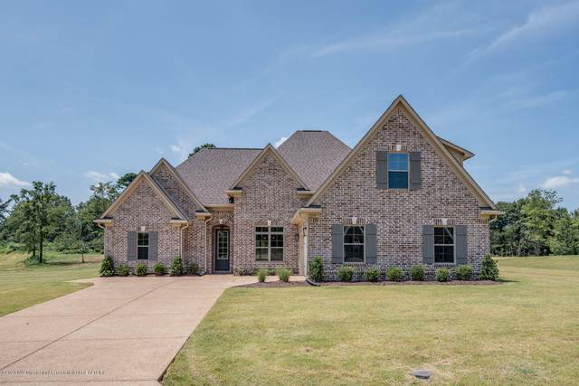 3109 Ross Meadows Lane, Olive Branch, MS 38654 (MLS #330071) :: Signature Realty