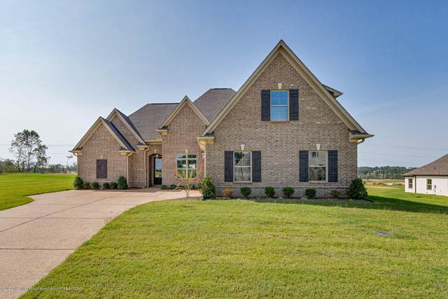 8297 Jack Thomas Cove, Olive Branch, MS 38654 (MLS #330325) :: Signature Realty