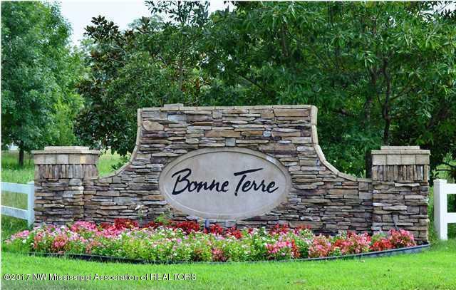 4611 Bonne Terre, Nesbit, MS 38651 (#312822) :: Berkshire Hathaway HomeServices Taliesyn Realty