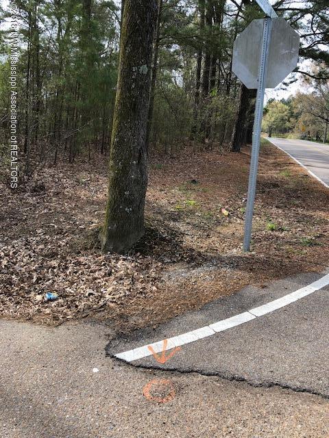 0 Confederate Ridge Drive, Lake Cormorant, MS 38641 (MLS #315567) :: Gowen Property Group | Keller Williams Realty