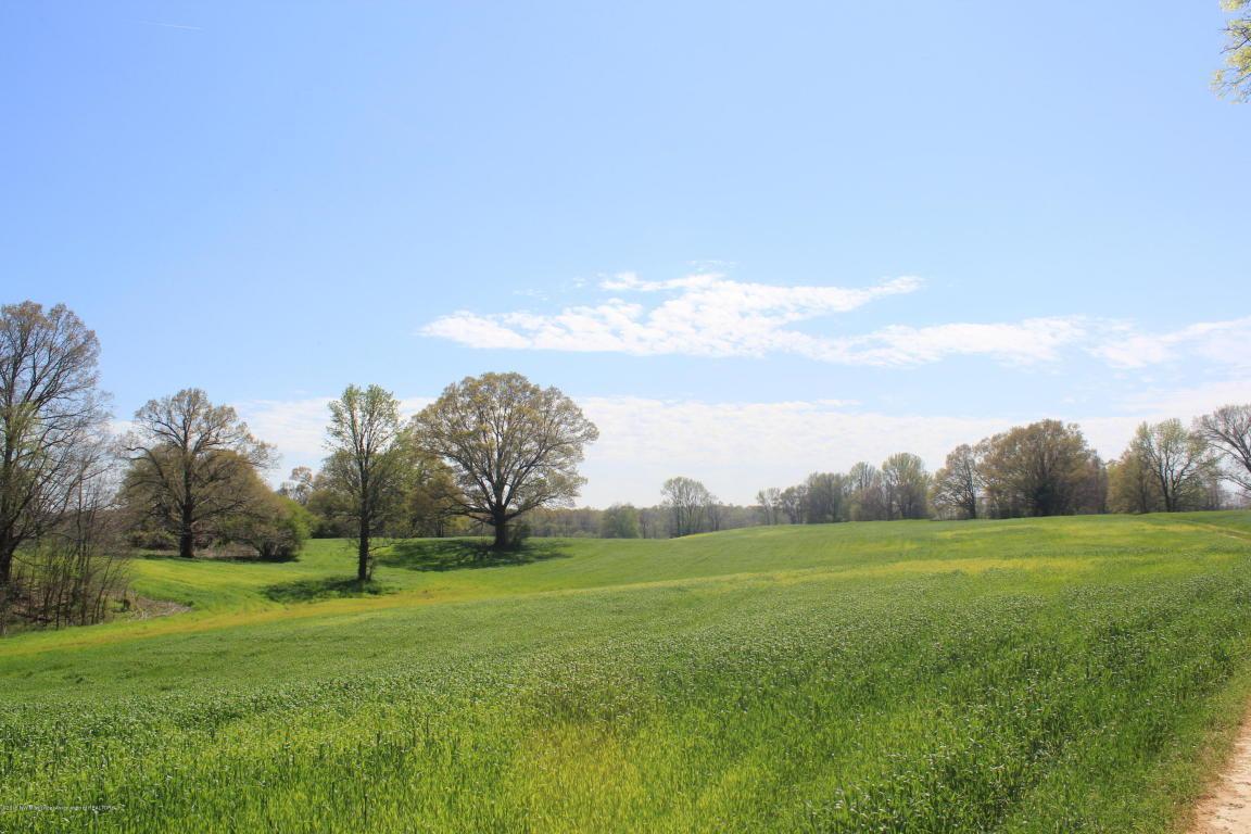 4 Delta View Road - Photo 1