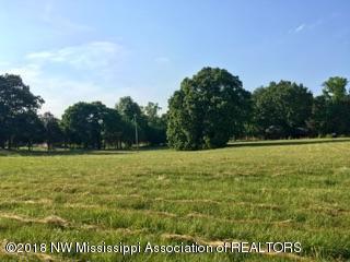 9560 County Line Road, Hernando, MS 38632 (MLS #316420) :: The Home Gurus, PLLC of Keller Williams Realty