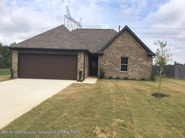 3829 Shae Pierce Drive, Southaven, MS 38671 (MLS #317687) :: Signature Realty