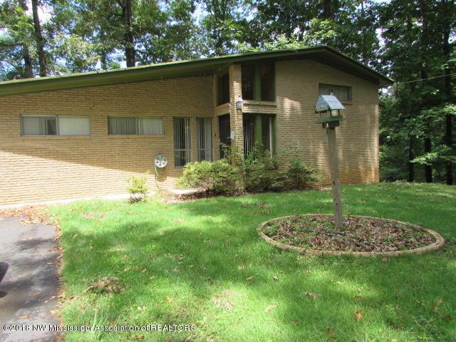 5306 Sportsman Drive, Nesbit, MS 38651 (MLS #318397) :: The Home Gurus, PLLC of Keller Williams Realty