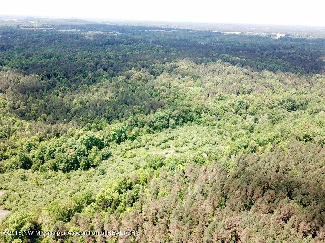 0 Hughey Lane, Ashland, MS 38603 (MLS #319048) :: Gowen Property Group   Keller Williams Realty