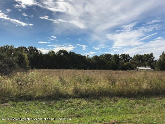 0 Golden Way (Lot 66), Coldwater, MS 38618 (MLS #319627) :: Signature Realty