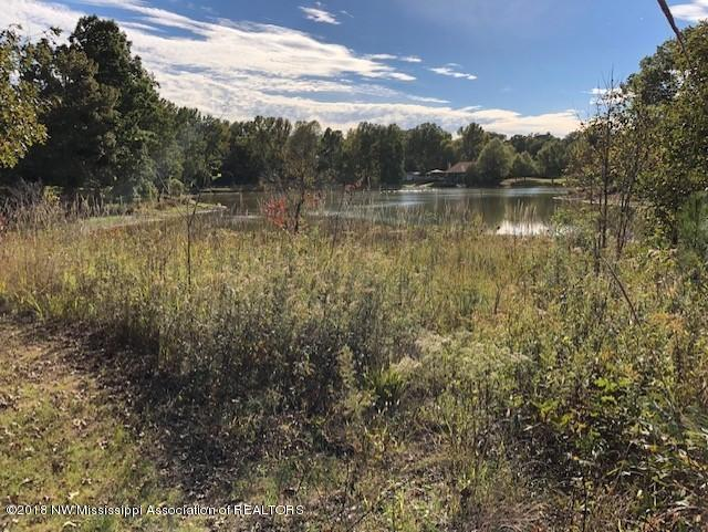 0 Swan Lake Drive (Lot 85), Coldwater, MS 38618 (MLS #319633) :: Signature Realty