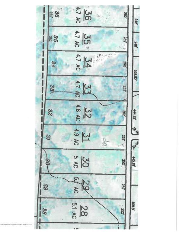 32 Luke Lane, Coldwater, MS 38618 (MLS #319946) :: Signature Realty