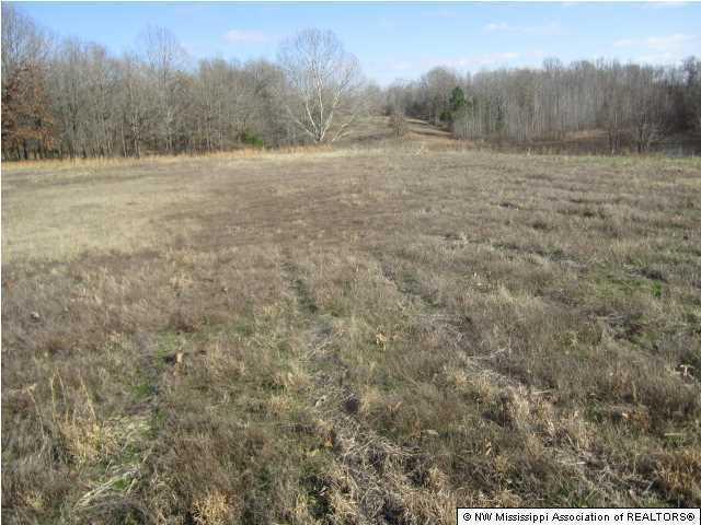 39 Winter Oaks Lane, Lamar, MS 38642 (MLS #320566) :: Gowen Property Group | Keller Williams Realty