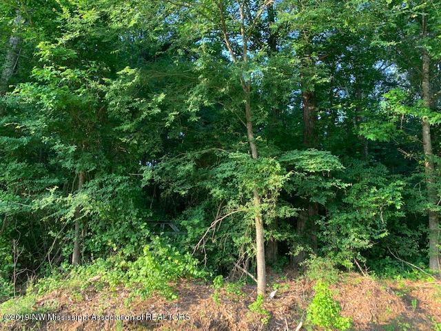 10 Brownsferry Road, Senatobia, MS 38668 (#324000) :: Berkshire Hathaway HomeServices Taliesyn Realty