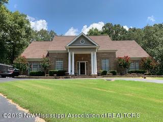 1660 Malone Road, Nesbit, MS 38651 (MLS #324348) :: Gowen Property Group | Keller Williams Realty