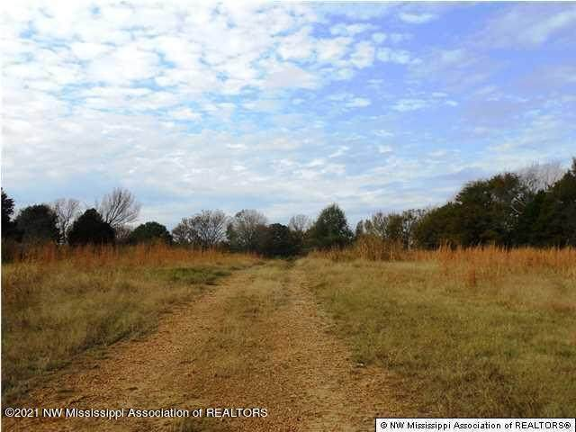 06 Highway 51, Senatobia, MS 38668 (MLS #326133) :: The Home Gurus, Keller Williams Realty