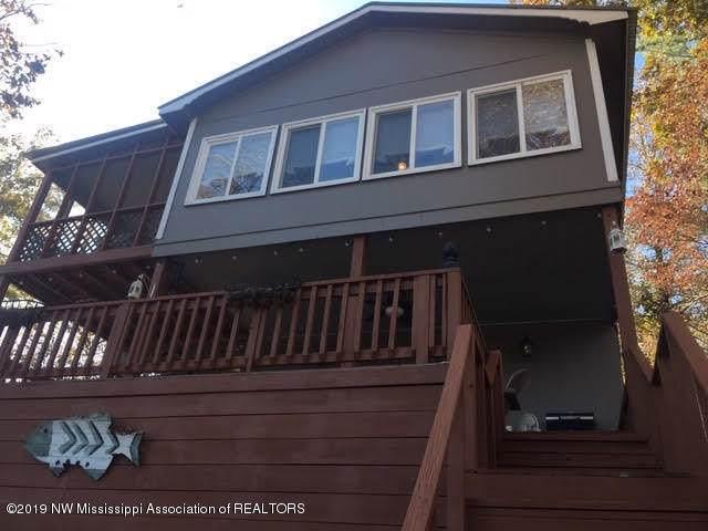 48 Lakeshore Drive, Ashland, MS 38603 (MLS #326337) :: Signature Realty