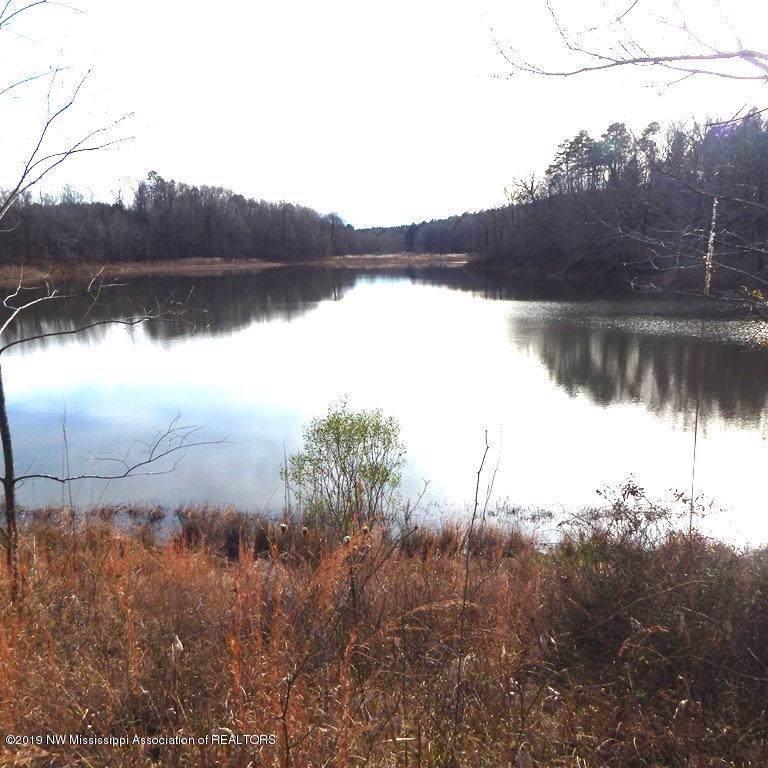 4128 County Road 65 - Photo 1