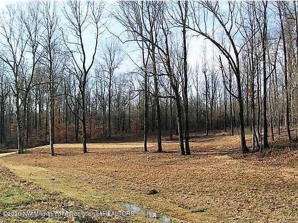 10117 Emerald Forest Drive, Hernando, MS 38632 (MLS #327192) :: Gowen Property Group | Keller Williams Realty