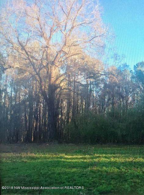 13411 Strickland Road, Byhalia, MS 38611 (MLS #327685) :: The Live Love Desoto Group