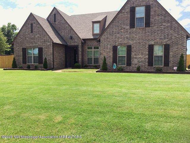 4023 Carolyn Mitchell Drive, Olive Branch, MS 38654 (MLS #330713) :: Signature Realty
