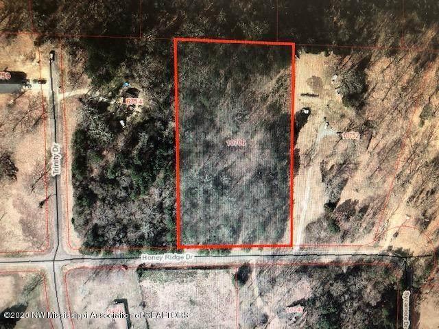 10756 Honey Ridge Drive, Hernando, MS 38632 (MLS #331465) :: The Justin Lance Team of Keller Williams Realty