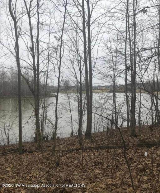 0 Nail Road, Horn Lake, MS 38637 (MLS #331537) :: Gowen Property Group | Keller Williams Realty
