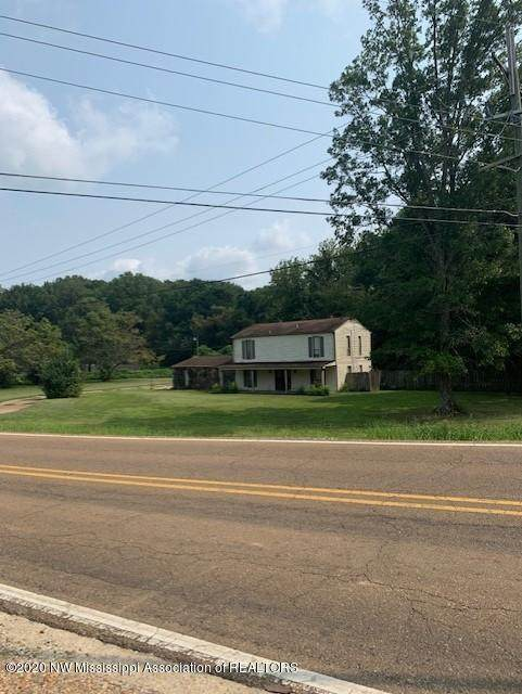 3049 Pleasant Hill Road, Nesbit, MS 38651 (MLS #331553) :: Signature Realty