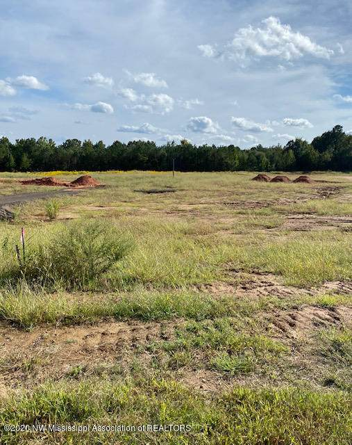 Lot 15 Belle Meade, Mount Pleasant, MS 38649 (MLS #331784) :: The Live Love Desoto Group