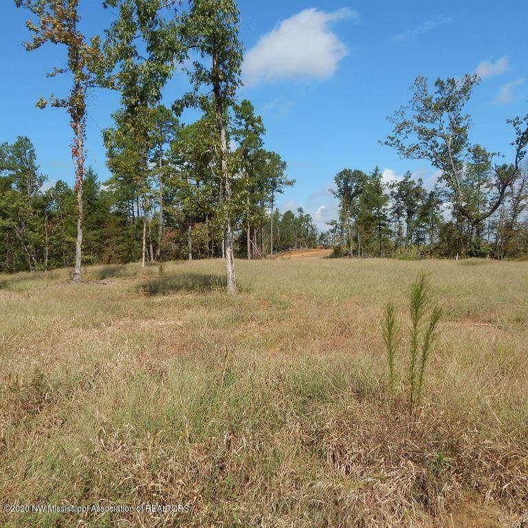 6420 Pea Ridge Road - Photo 1