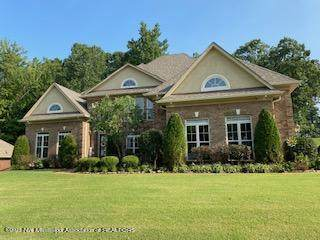 2615 College Road, Southaven, MS 38672 (MLS #336787) :: The Live Love Desoto Group
