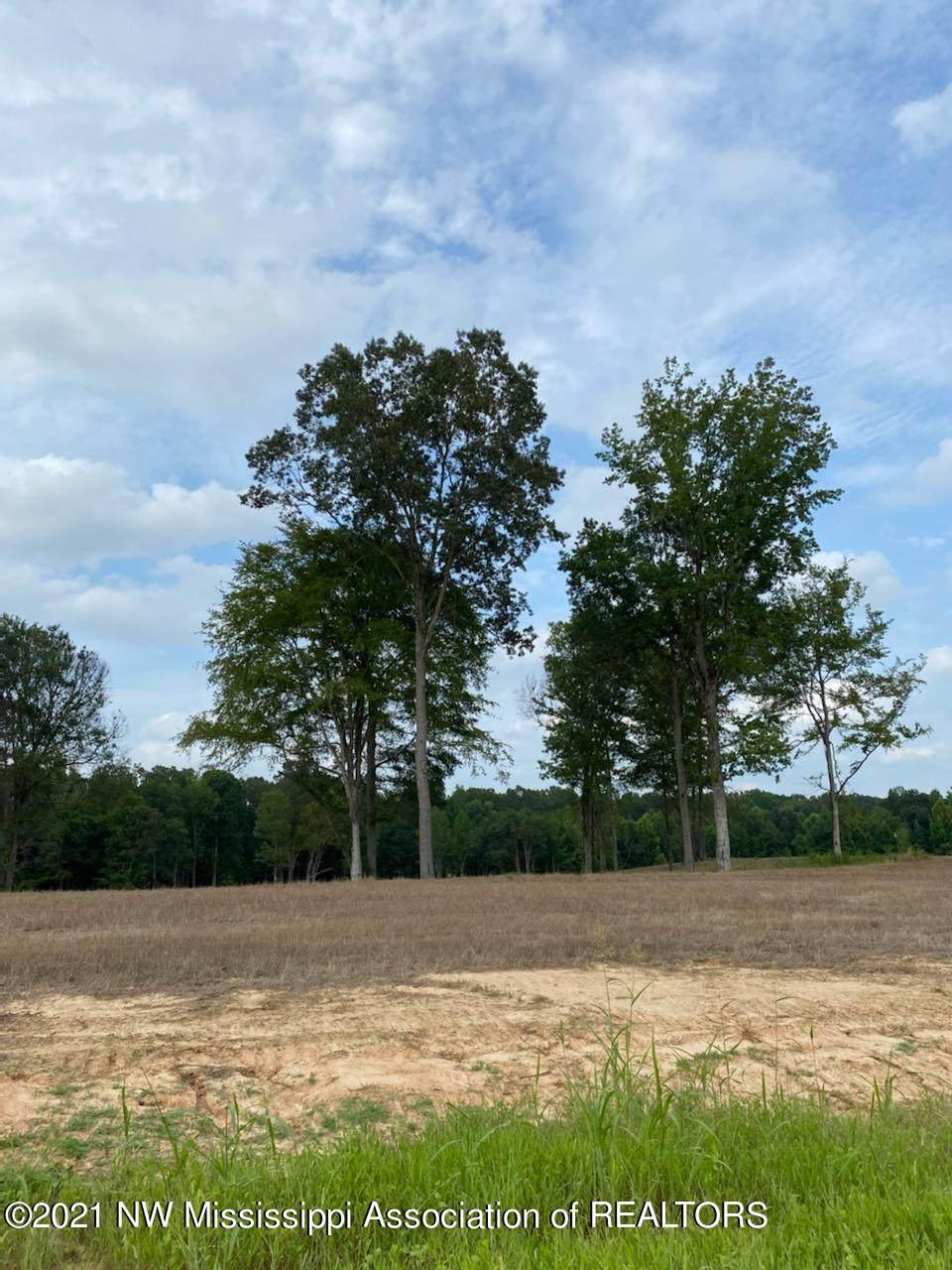 36 Pebble View Drive - Photo 1