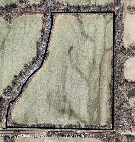 7998 Vaiden Road, Hernando, MS 38632 (MLS #337693) :: The Home Gurus, Keller Williams Realty